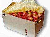 Plásticos Bolhas - para proteção de frutas